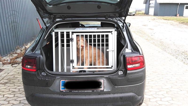 b-Safe Large Wide hundebur til boxer - Citroën Cactus årgang 2017